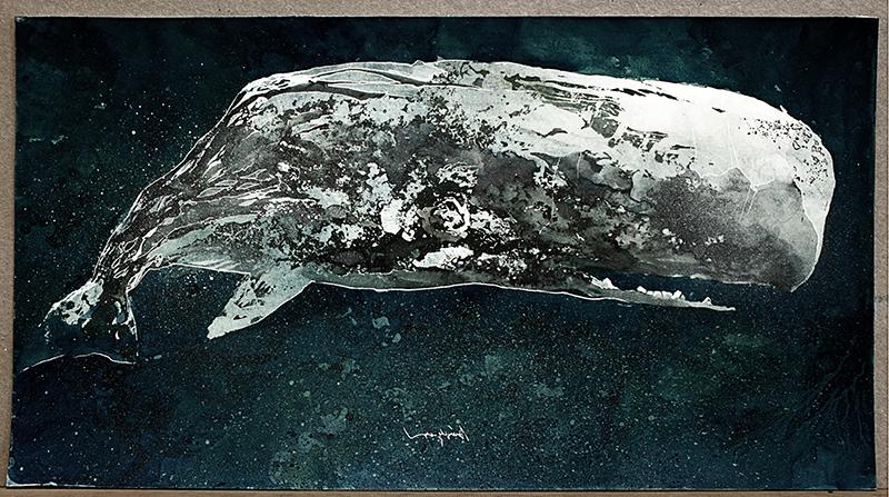 Moby Dick – Libro d'Artista