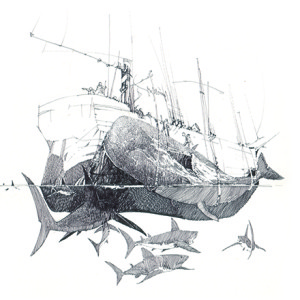 Moby Dick ink drawings